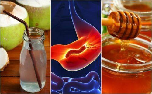 Prøv de her naturmidler mod mavekatar