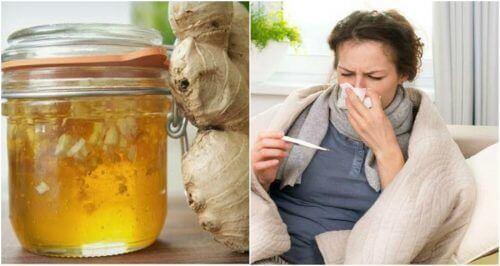 Bekæmp forkølelser med honning og ingefærsirup