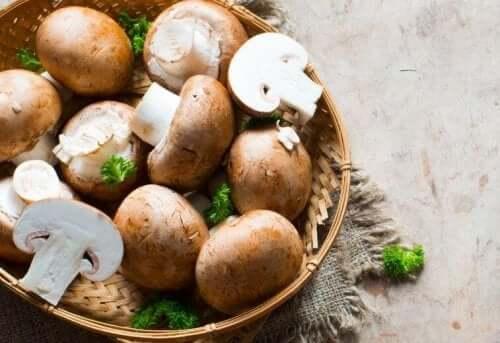 brune champignon i kurv