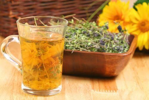 Infusioner til at rense kroppen: 4 gode opskrifter
