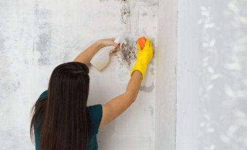 Kvinde er i gang med at bekæmpe skimmelsvamp på badeværelset