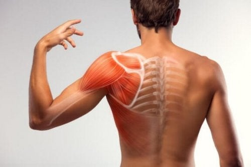7 løsninger til at lindre muskelkramper