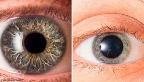 Du kan også holde øje med personens pupiller, for at forsøge at afgøre om vedkommende lyver