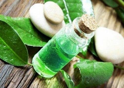 Tea tree-olie kan bruges til at behandle tandbylder med hjemmemidler