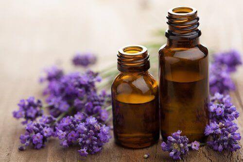Lavendelolie på små flasker