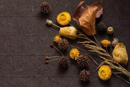 Tørrede blomster passer perfekt til et efterårsbryllup