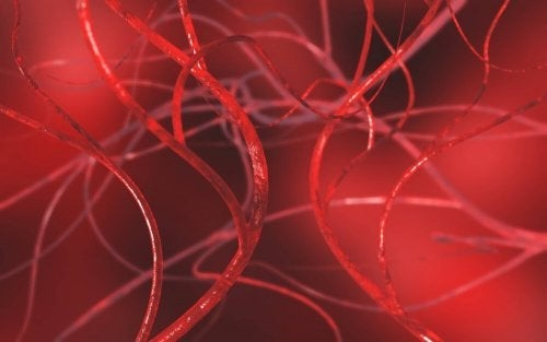 Fire naturlægemidler til at rense pulsårer