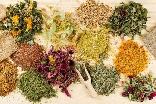 Medicinske urter til lindring af mavesmerter