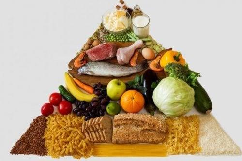 """Kostpyramide fører til spørgsmålet: """"Hvad står der på et ernæringsmærke?"""""""