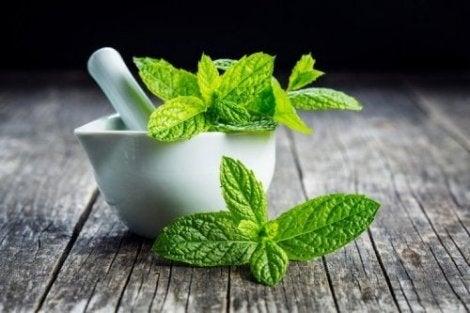 Mynteblade til lindring af mavesmerter