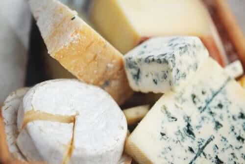 Forskellige typer af oste
