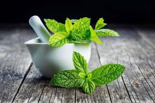 Sundhedsfordele ved myntete: Mynteblade og en morter