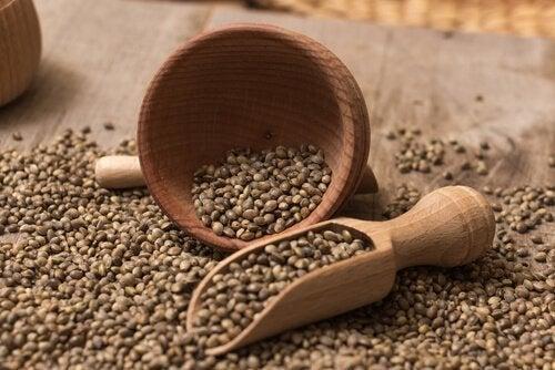 Hampefrø er rige på sunde fedtsyrer, proteiner af høj kvalitet og essentielle mikronæringsstoffer