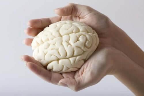 Person holder hjerne i hænderne