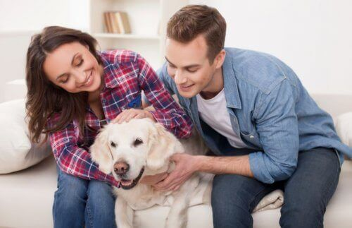 Par med hund i midten