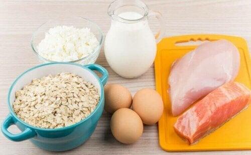 Mad med protein - at spise protein hjælper med at kontrollere sukkertrang