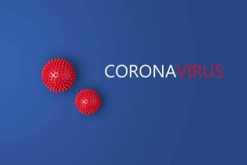 Stammer af coronavirus: Studie viser 2 forskellige stammer