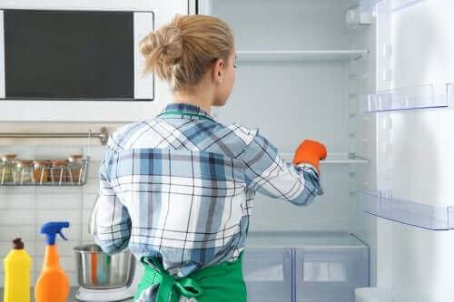 Miljøvenlige metoder til at desinficere køleskabet