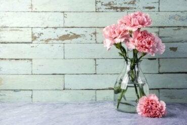 Tre hurtige måder at gøre glasvaser rene på
