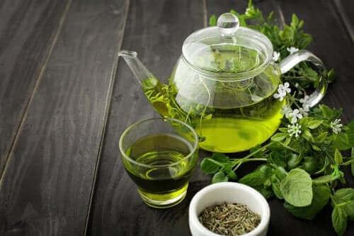 Grøn te i glas