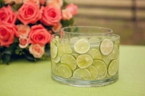Citroner fyldt i en vase
