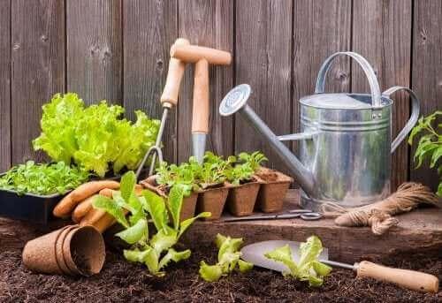 Værktøjer til at lave en byhave
