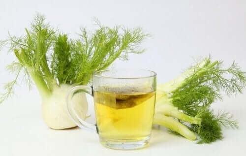 Fennikel kan bruges i te
