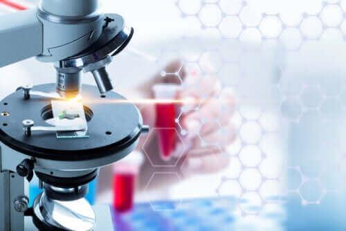Hvad er en flydende biopsi?