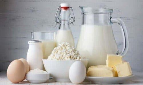 Mejeriprodukter er rige på kalcium