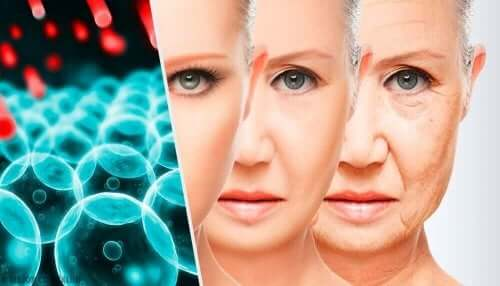 Kvinde viser, hvordan gener hænger sammen med, hvornår vi begynder at ældes
