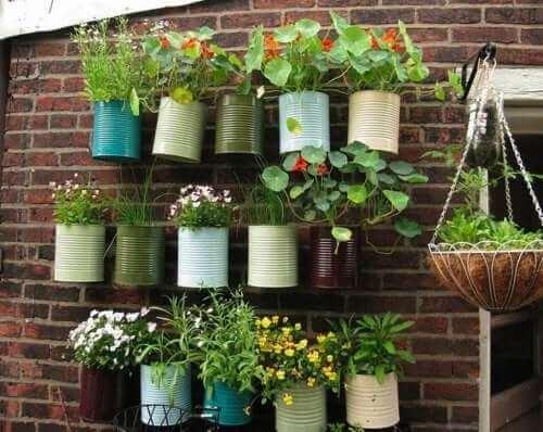 Du kan hænge planter lodret i gryder eller plantekummer for bedre at udnytte pladsen