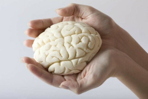 Hjerne i hænder symboliserer, hvordan coronavirus påvirker hjernen