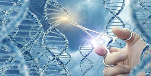 Hvad er genmutationer og hvad betyder de?