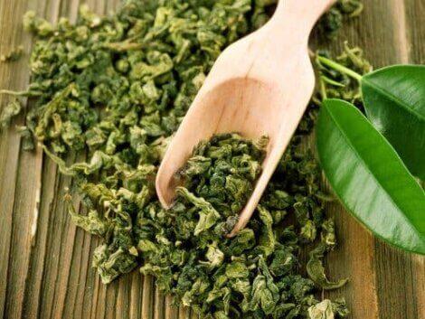 Grønne teblade