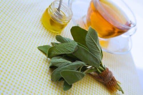 Salvie og honning til behandling af små sår og skrammer