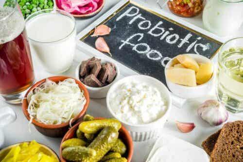 Præbiotika og probiotika - hvad er forskellen?