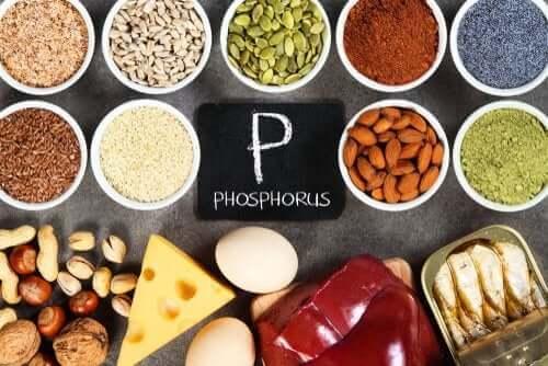Hyperfosfatæmi: En fosfatubalance
