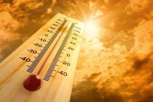 Opdag seks effekter af varme på kroppen
