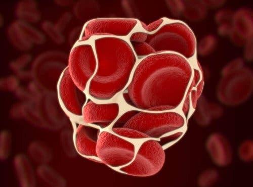 Mennesker med von Willebrand sygdom har et problem med koagulationsfaktoren