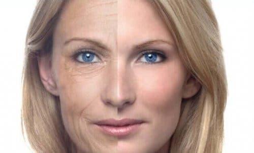 Kvindes hud ældes pænt grundet anvendelse af natcreme med vindruekerneolie