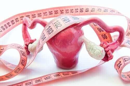 Livmoder og målebånd symboliserer livmoderhalspolypper