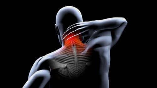 Forebyggelse og behandling af muskelkontrakturer