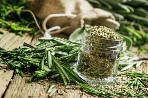 Rosmaring kan bruges til at lave te til anæmi