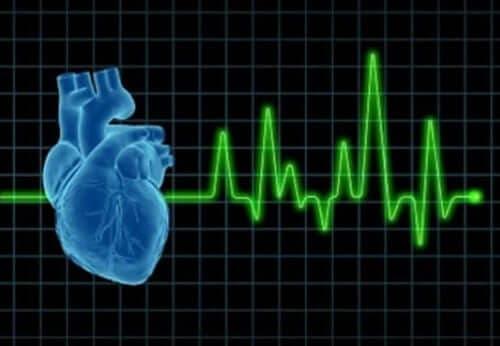 Hjerte med puls