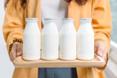 Hvad er bedst: Fedtfattige eller fedtholdige mejeriprodukter?
