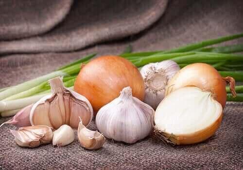 Forskellige løg illustrerer betydningen af farven på fødevarer