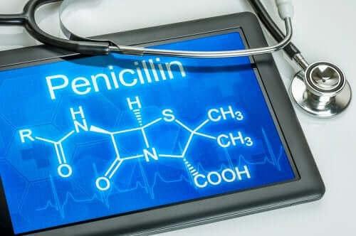 Penicillin og dets anvendelse