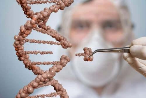 Forsker kigger på DNA molekyler