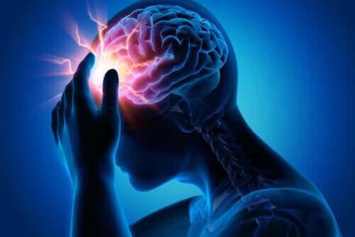 Hvad er neuroterapi?