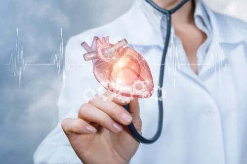 Læge undersøger hjertet